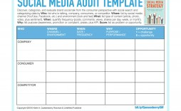 003 Dreaded Social Media Strategy Template Pdf High Resolution  Sample Content