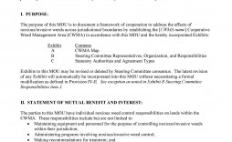003 Excellent Letter Of Mutual Understanding Template Idea