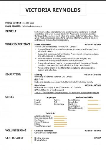 003 Excellent Nursing Student Resume Template Idea  Free Word360