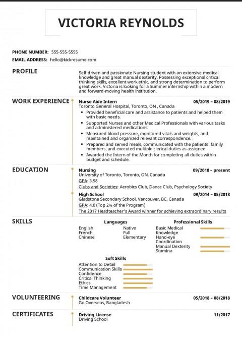 003 Excellent Nursing Student Resume Template Idea  Free Word480