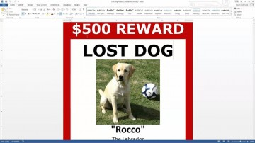 003 Exceptional Missing Dog Flyer Template High Resolution  Lost Poster360