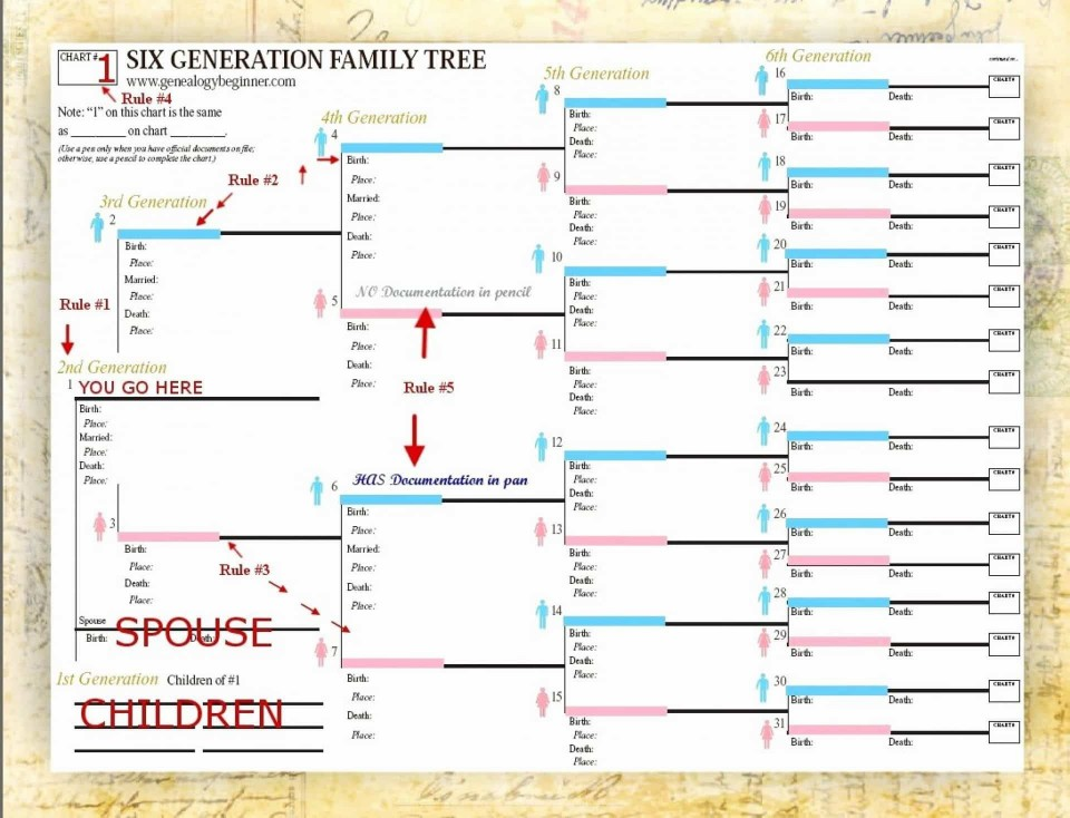 003 Fantastic Excel Family Tree Template Highest Clarity  10 Generation Download Free Editable960
