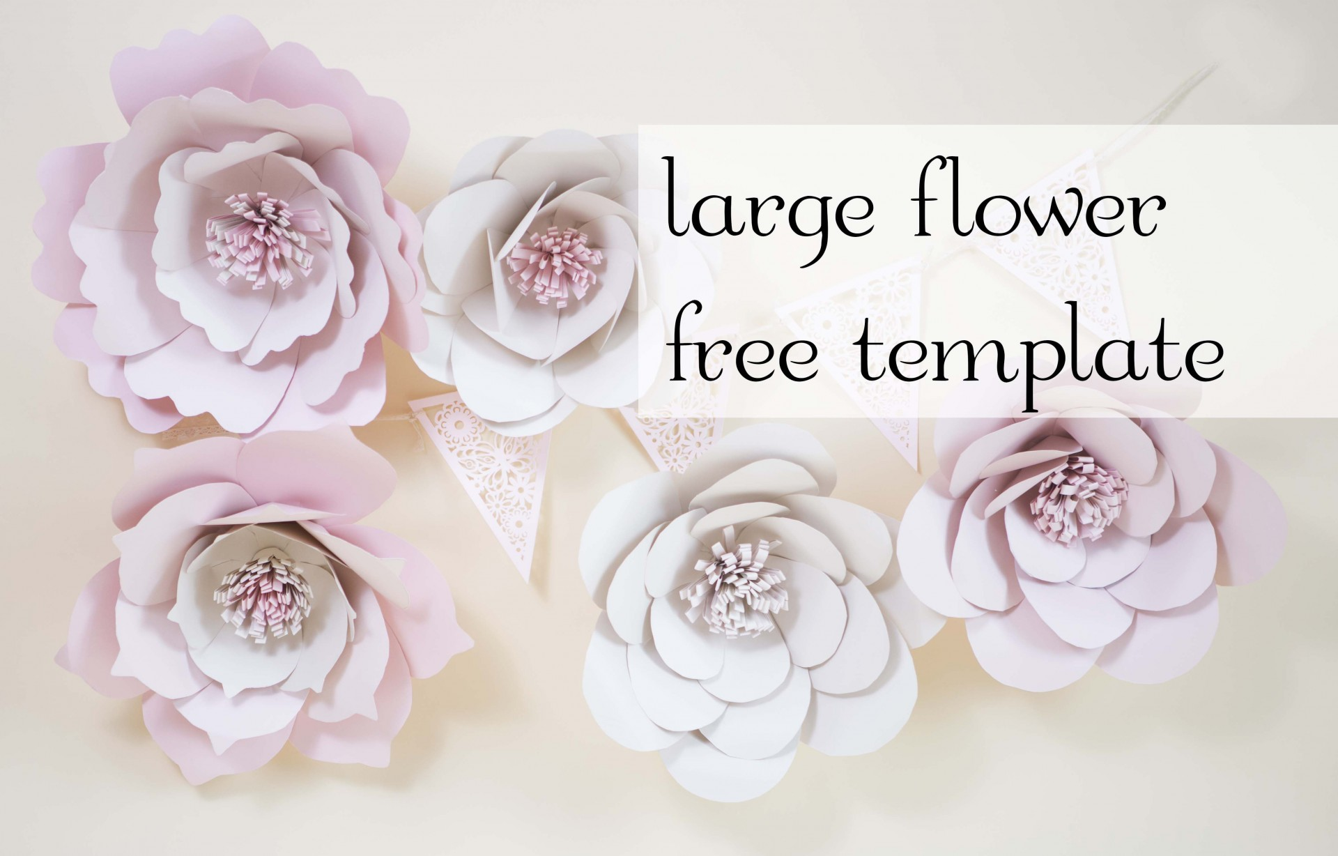 003 Fantastic Large Rose Paper Flower Template Free Highest Clarity 1920