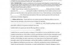 003 Fantastic Lease To Own Contract Template Example  Free Form Commercial Agreement Car