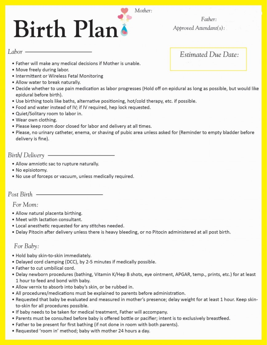 003 Fantastic One Page Birth Plan Template Sample  Pdf Simple