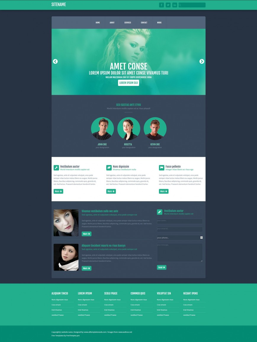 003 Fantastic One Page Website Html Template Free Download Example  Responsive With Cs