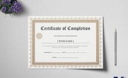 003 Fascinating Degree Certificate Template Word High Def