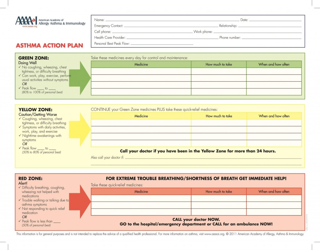 003 Fearsome Action Plan Template Excel High Def Large