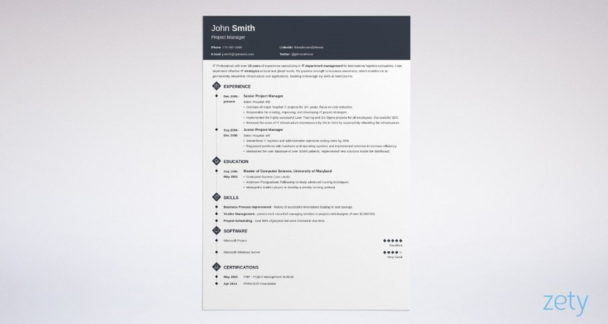 003 Fearsome Best Professional Resume Template Inspiration  For Fresher 2019 Cv Download