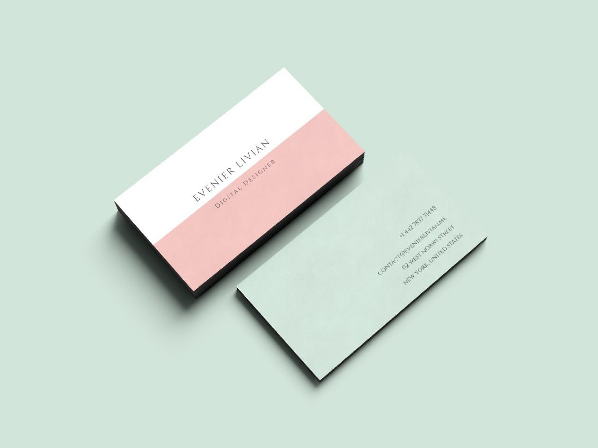 003 Fearsome Minimalist Busines Card Template Free Concept  Minimal Psd1920