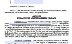 003 Fearsome Operation Agreement Llc Template Highest Quality  Operating Pdf New York