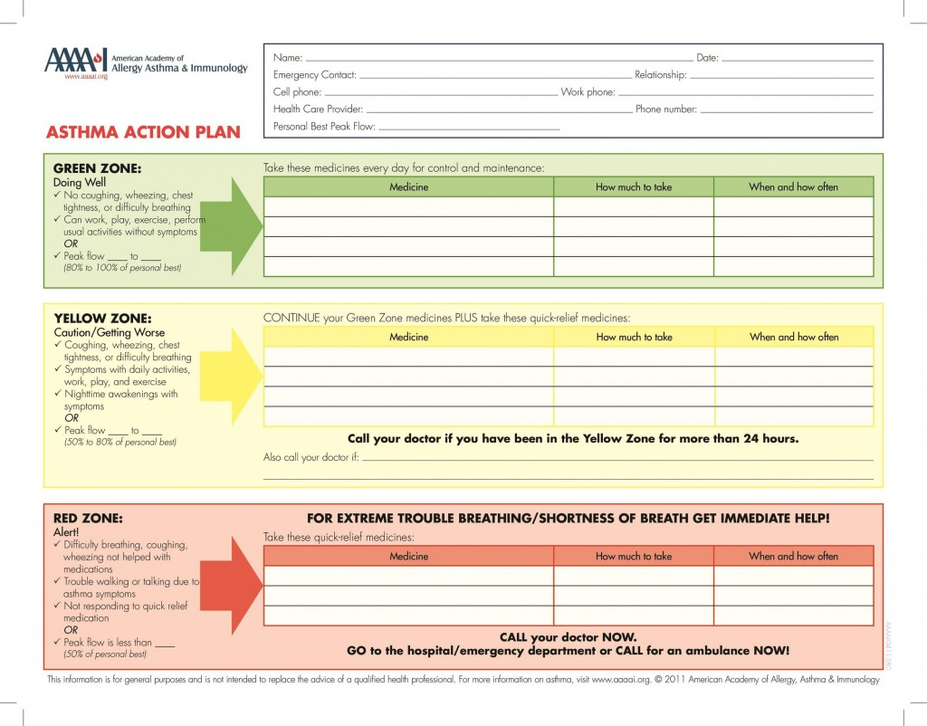 003 Fearsome Smart Action Plan Template High Def  Download Nh Example FreeLarge
