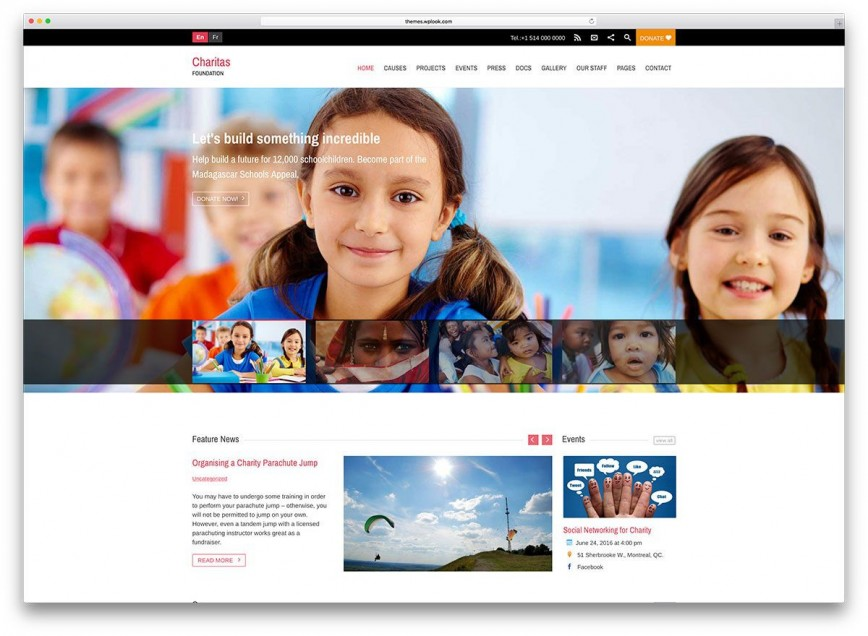 003 Frightening Free Non Profit Website Template Concept  Templates Charity