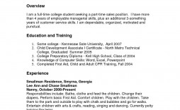 003 Frightening Part Time Job Resume Template Example  Student Summary