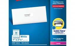 003 Impressive Free Avery Mailing Label Template Highest Clarity  Templates Addres For Mac 8160 5163