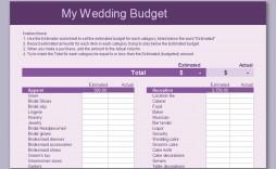 003 Impressive Line Item Budget Template Word High Resolution