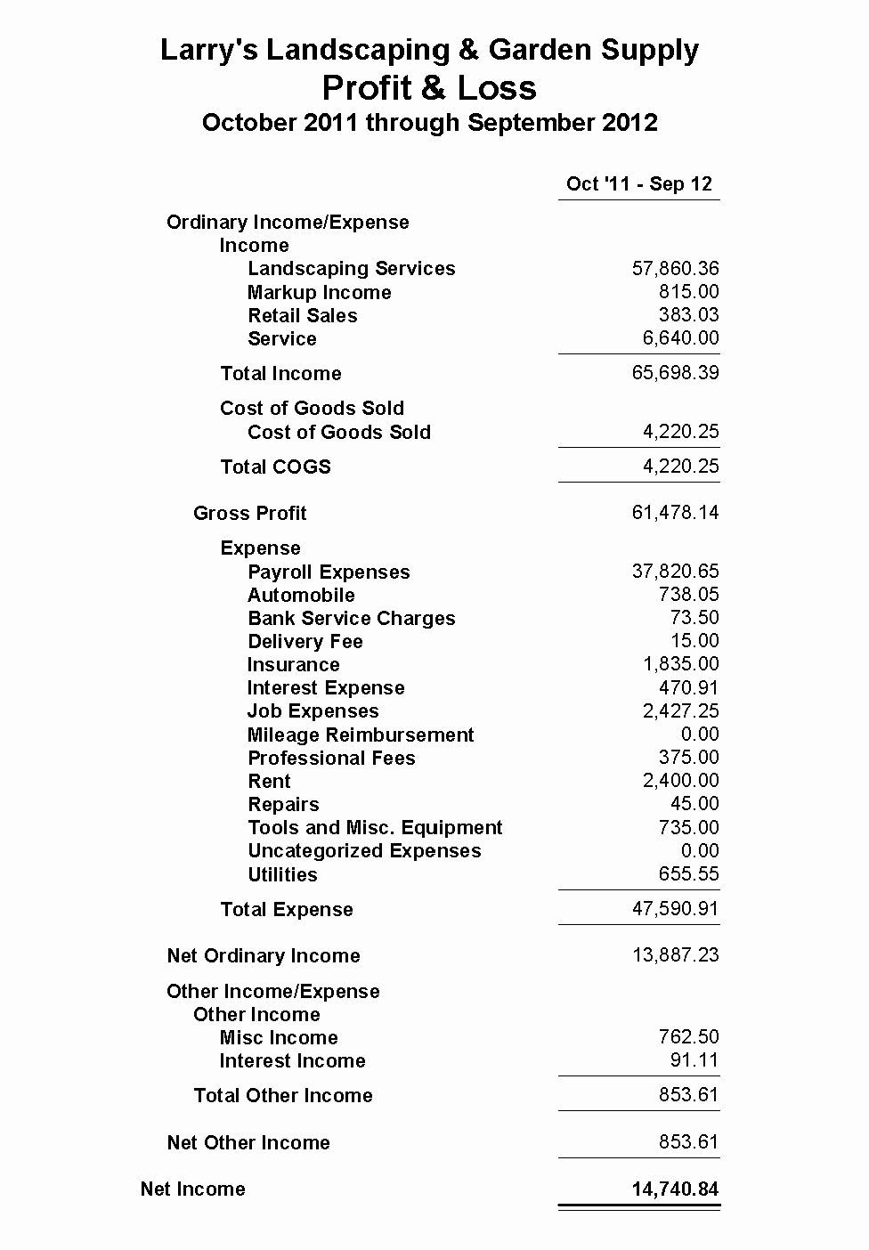 003 Magnificent Profit And Los Template Example  Statement Form For Small Busines Sample Pdf FreeFull