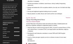 003 Magnificent Resume Template For Nurse Inspiration  Nurses Free Download Practitioner Best