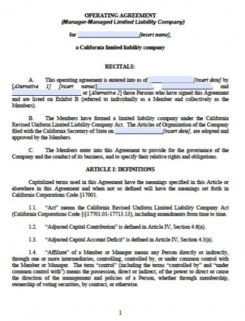 003 Outstanding Llc Partnership Agreement Template Image  Free Operating480