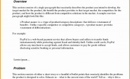 003 Phenomenal Executive Summary Word Template Free Download High Def