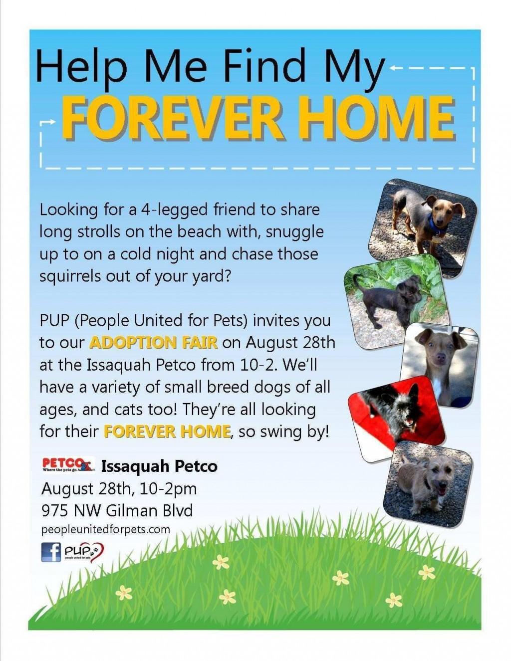 003 Phenomenal Pet Adoption Flyer Template Highest Quality  Free Event DogLarge