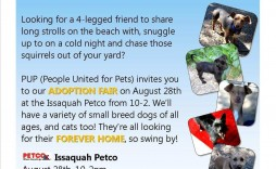 003 Phenomenal Pet Adoption Flyer Template Highest Quality  Free Event Dog