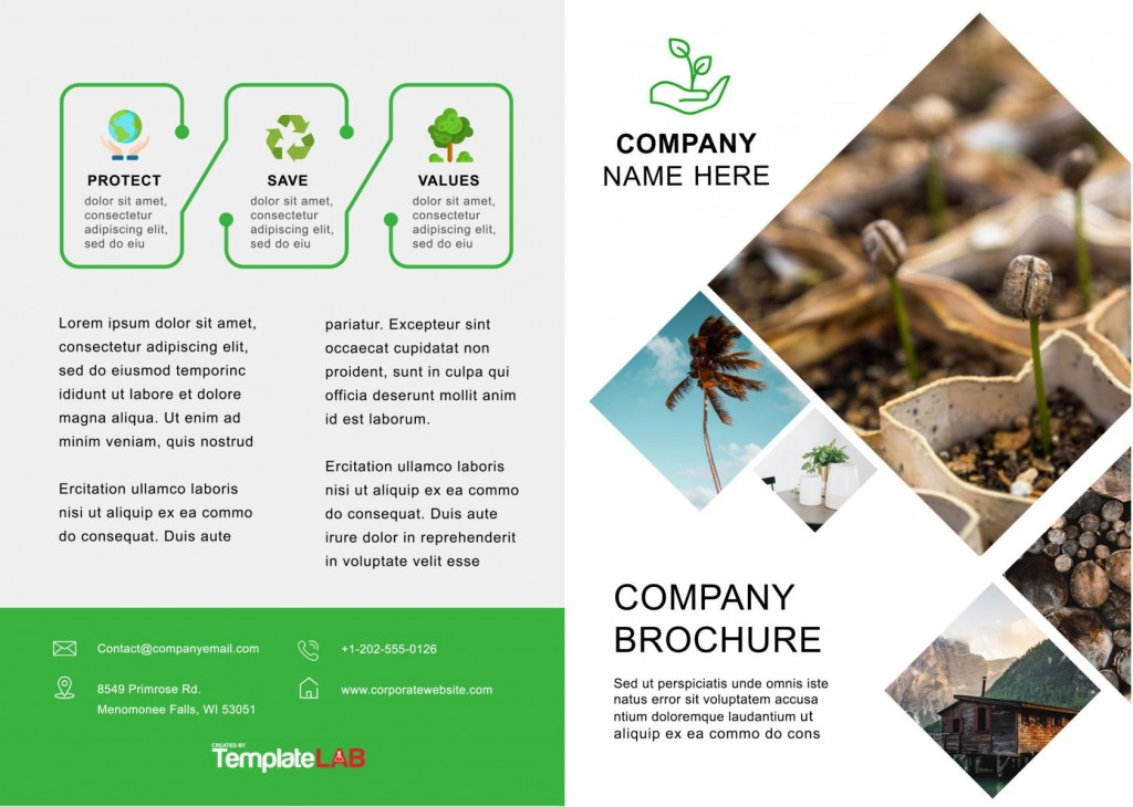 003 Remarkable Word Brochure Template Download Free Idea  3 Fold Travel TriLarge
