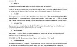003 Shocking Busines Plan Executive Summary Template Word Sample