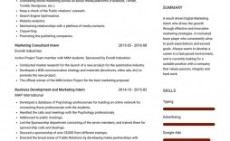 003 Simple Resume Template For Intern Photo  Interns Internship In Engineering Law Example