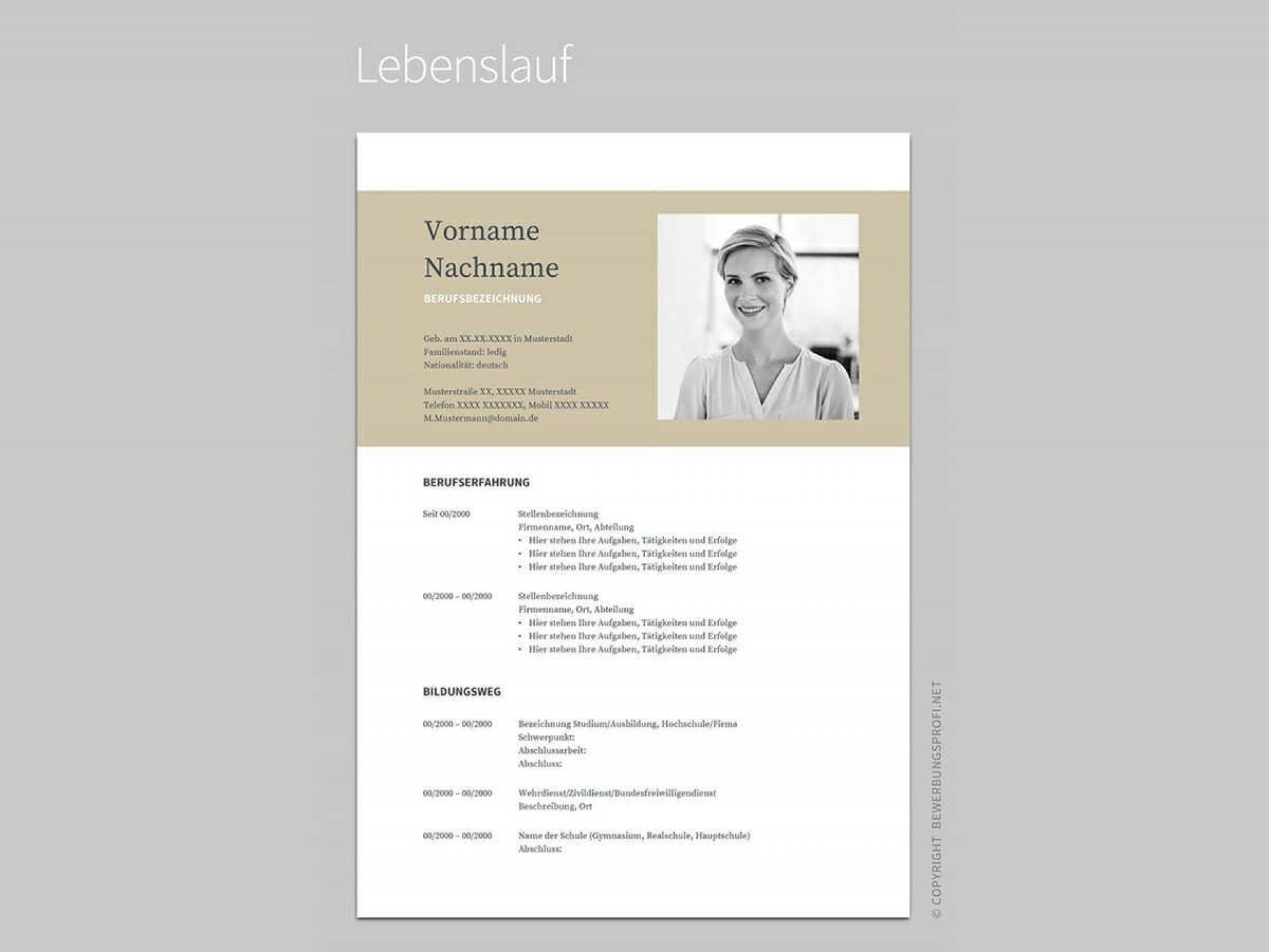 003 Singular Entry Level Resume Template Google Doc Design  Docs1920