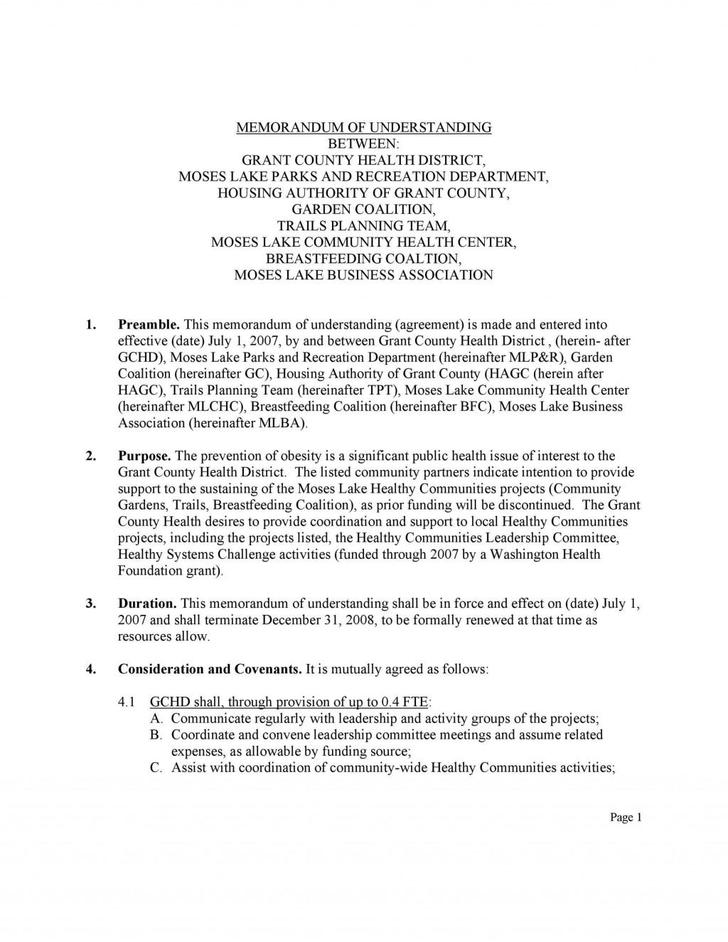 003 Singular Letter Of Understanding Format Highest Clarity  Sample MemorandumLarge