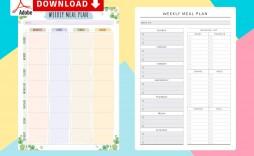 003 Singular Meal Plan Template Pdf High Resolution  Printable Diabetic Sample Weekly Planning Worksheet