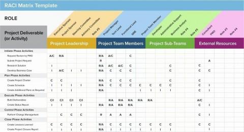 003 Singular Project Management Statu Report Template Excel Inspiration  Progres Update480