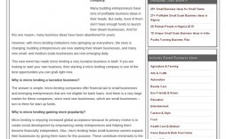 003 Singular Startup Busines Plan Example Doc Concept  Sample