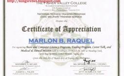 003 Stunning Certificate Of Recognition Sample Wording Image  Award
