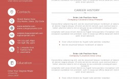 003 Stunning Software Engineer Resume Template Example  Word Format Free Download Microsoft