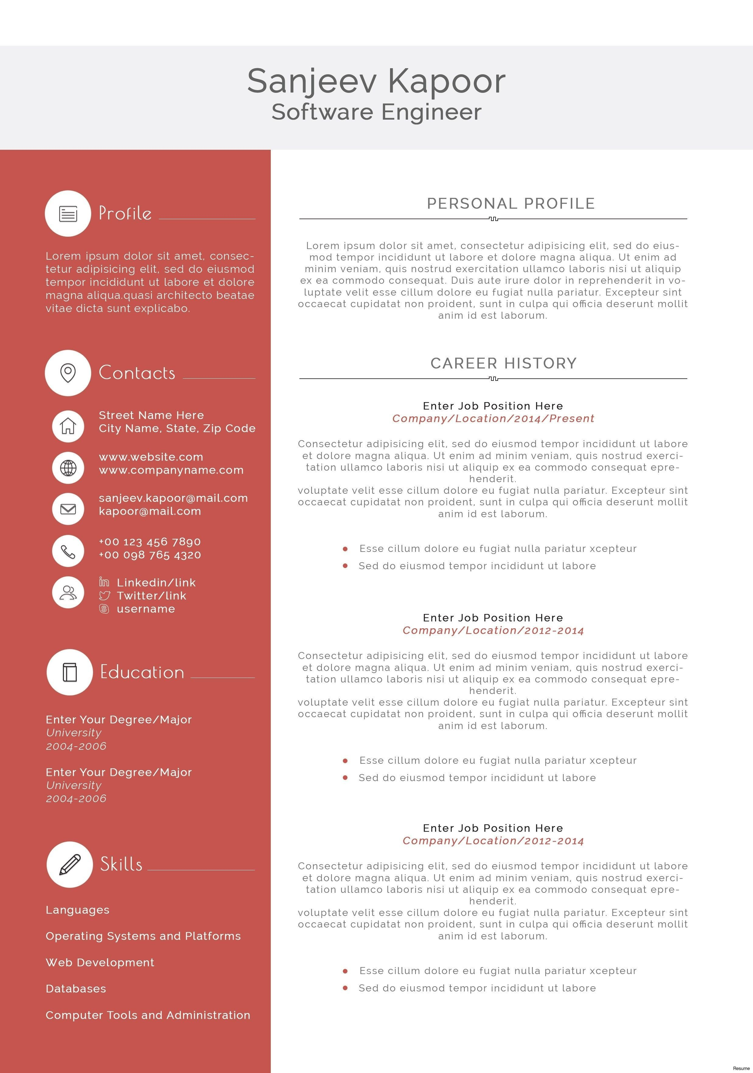 003 Stunning Software Engineer Resume Template Example  Word Format Free Download MicrosoftFull