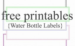 003 Surprising Bottle Label Template Free Highest Clarity  Mini Wine Water Birthday Champagne Download