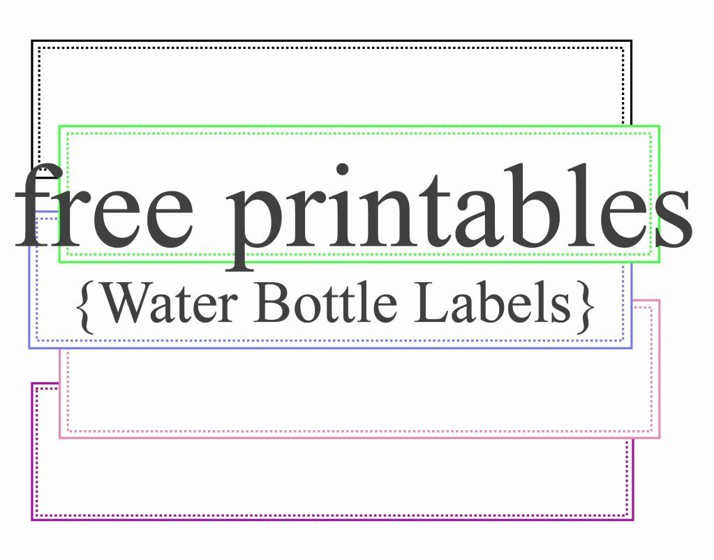003 Surprising Bottle Label Template Free Highest Clarity  Mini Wine Water Birthday Champagne DownloadFull