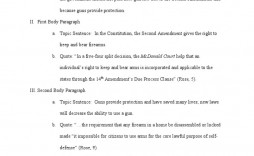 003 Surprising Gun Control Essay High Def  Anti Thesi Example Argumentative Title