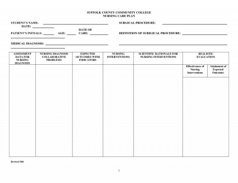 003 Top Nursing Care Plan Template Concept  Free Pdf Download480