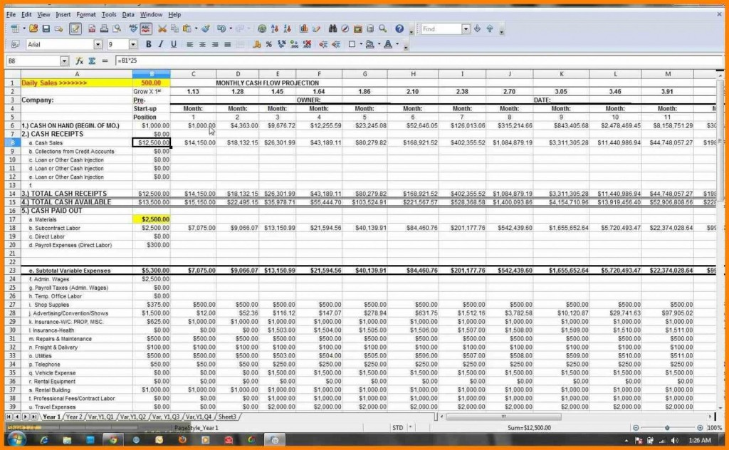 003 Unbelievable Microsoft Excel Weekly Cash Flow Template Sample  ForecastLarge
