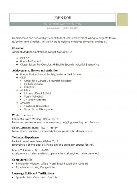 003 Unforgettable Free High School Resume Template Microsoft Word Inspiration 480