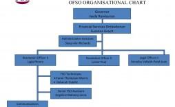003 Unforgettable Microsoft Org Chart Template Inspiration  Templates Office Organization Organizational