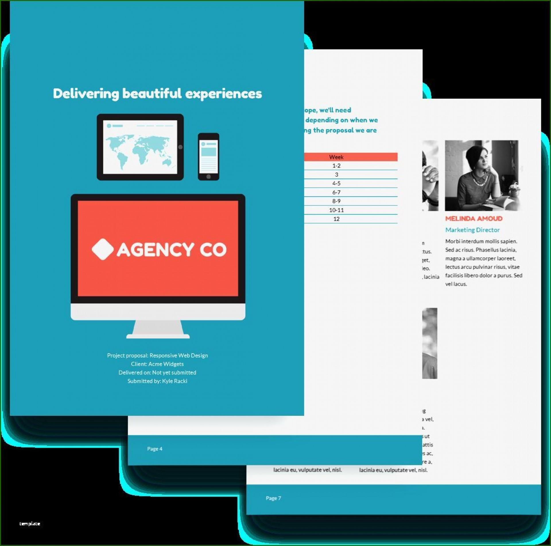 003 Unique Website Development Proposal Template Free High Resolution  Word1920