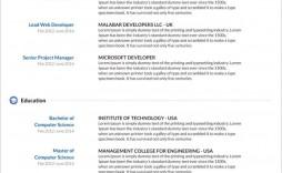 003 Unusual Resume Template Word 2003 Free Download Sample  Downloads