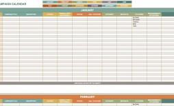 003 Wondrou Political Campaign Plan Template High Definition  Pdf Outline Word
