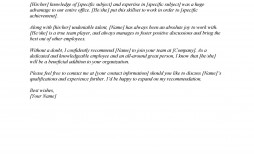 004 Amazing Letter Of Recommendation Template Word Design  General Uk