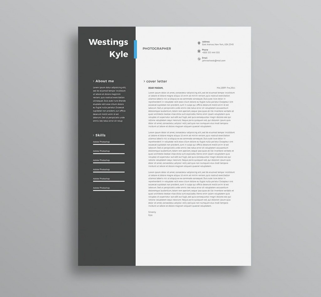 004 Amazing Professional Resume Template 2018 Free Download Photo Large