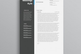 004 Amazing Professional Resume Template 2018 Free Download Photo